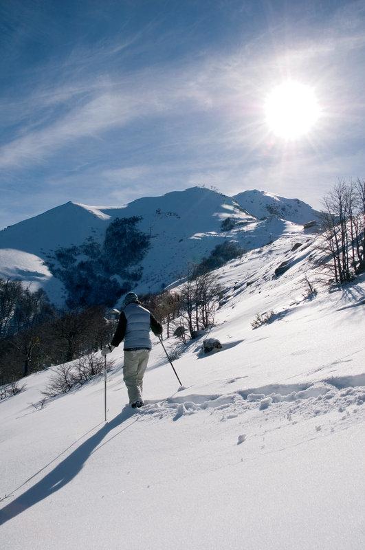 Enjoy Snowshoeing