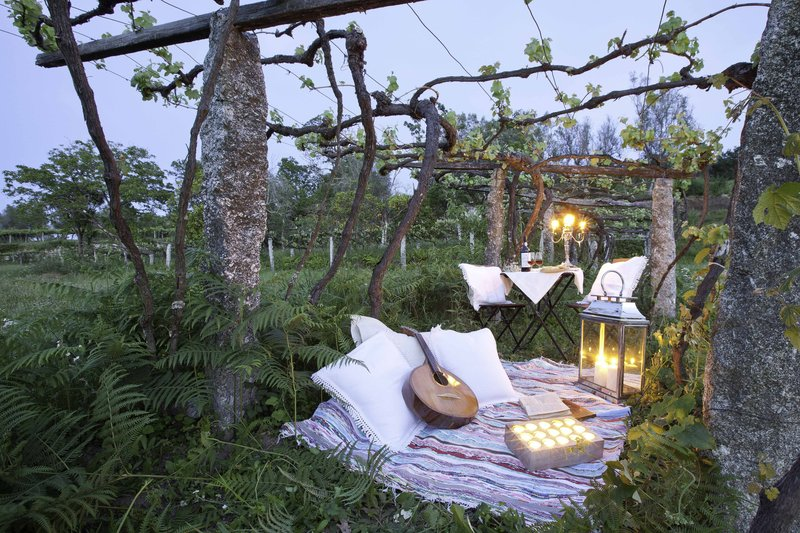 Romantic Picnic under the vineyards