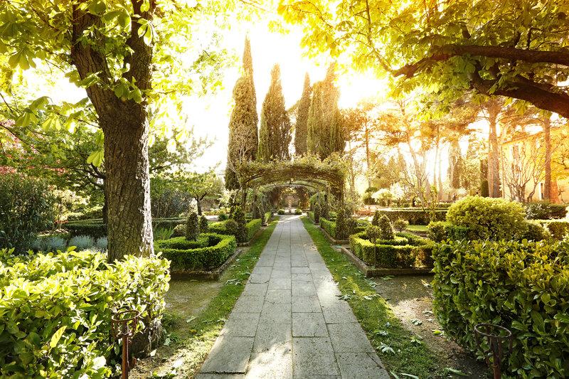 The Rosery through autumn