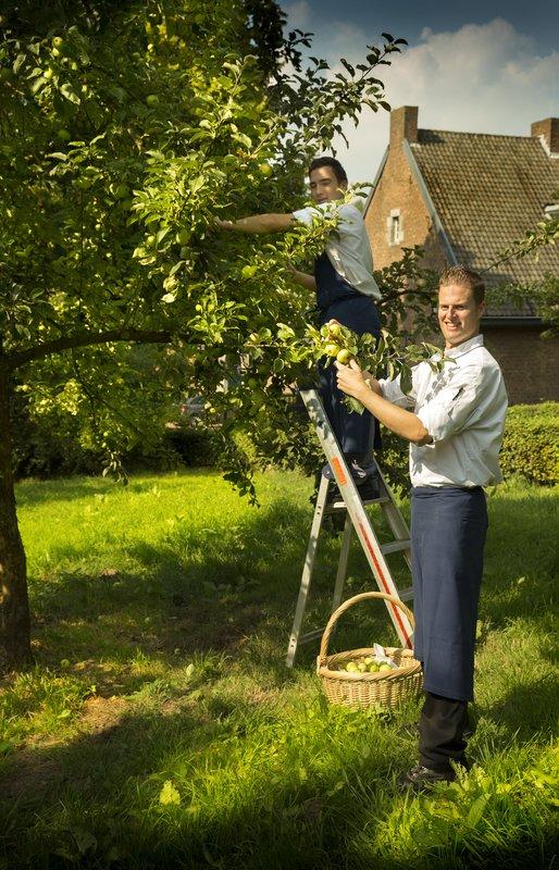 Fruit orchard WinselerHof