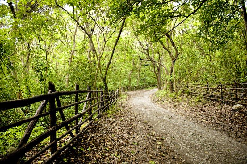 Hiking and Biking Path