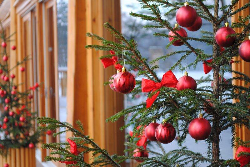 Christmas in IDW Esperanza Resort