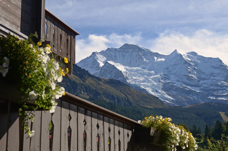 The Jungfrau And Silberhorn