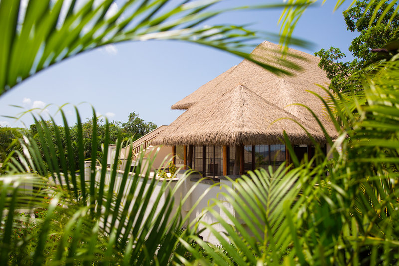 One of the 3-bed villas hidden amongst the palms