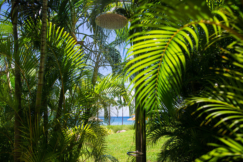 Outdoor beach shower nestled between the ferns