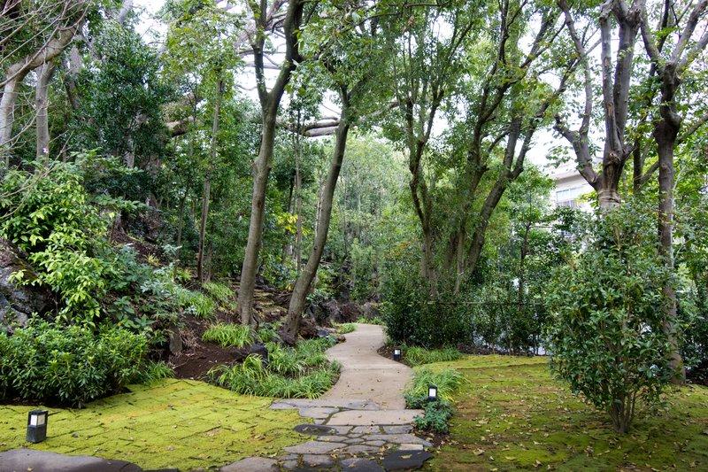 Garden strolling