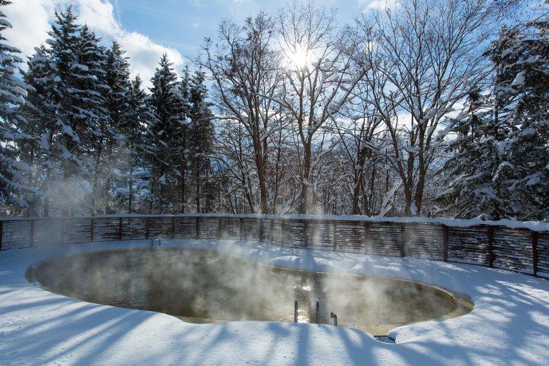 The Green Leaf Niseko Village - Thermal Pool