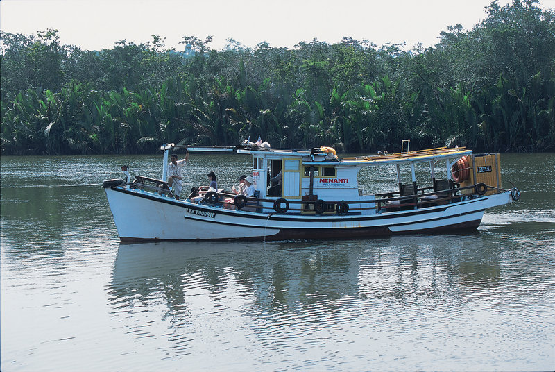 Eco Adventure Marang River Cruise