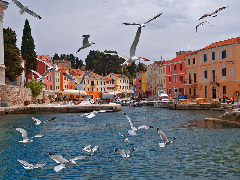 The village of Veli Losinj