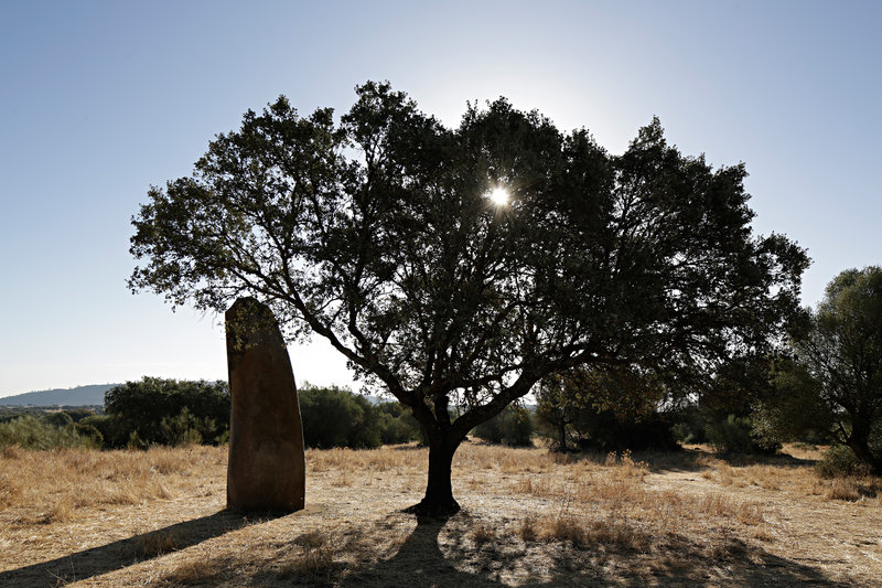 Tallest menhir in Portugal is in the estate