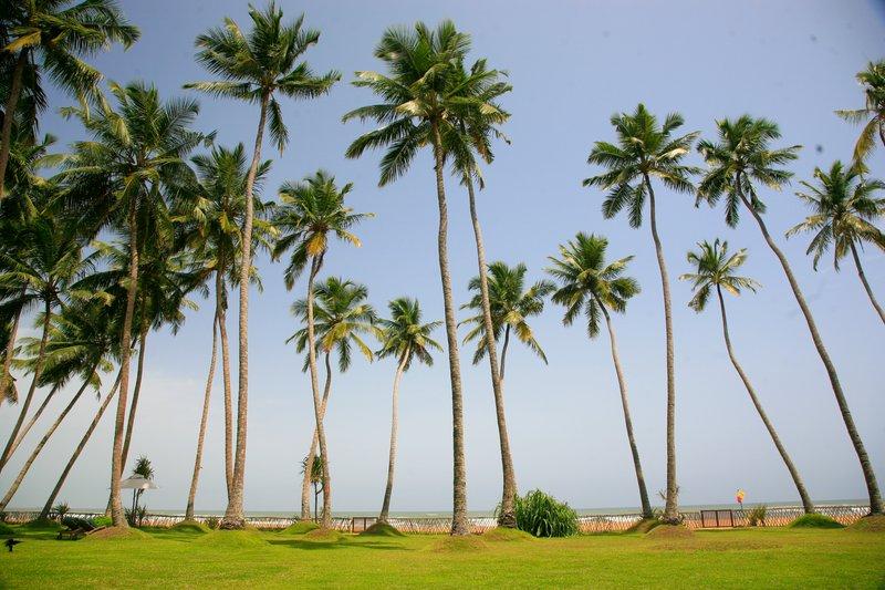 Serene Pavilions Oceanside