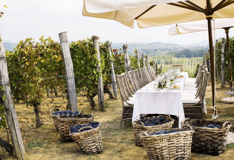 Table in the Vineyard