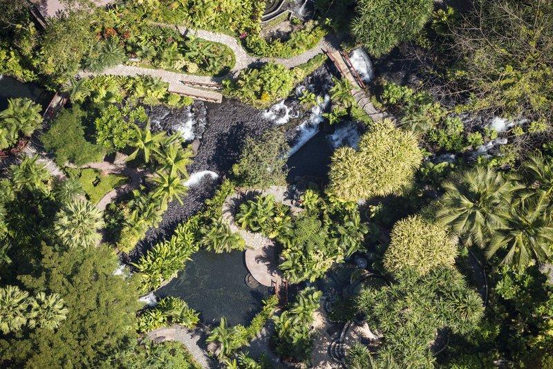 Private Rainforest Reserve