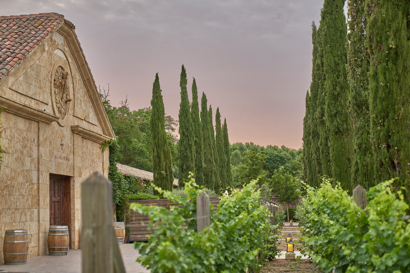 Hacienda Zorita Chapel
