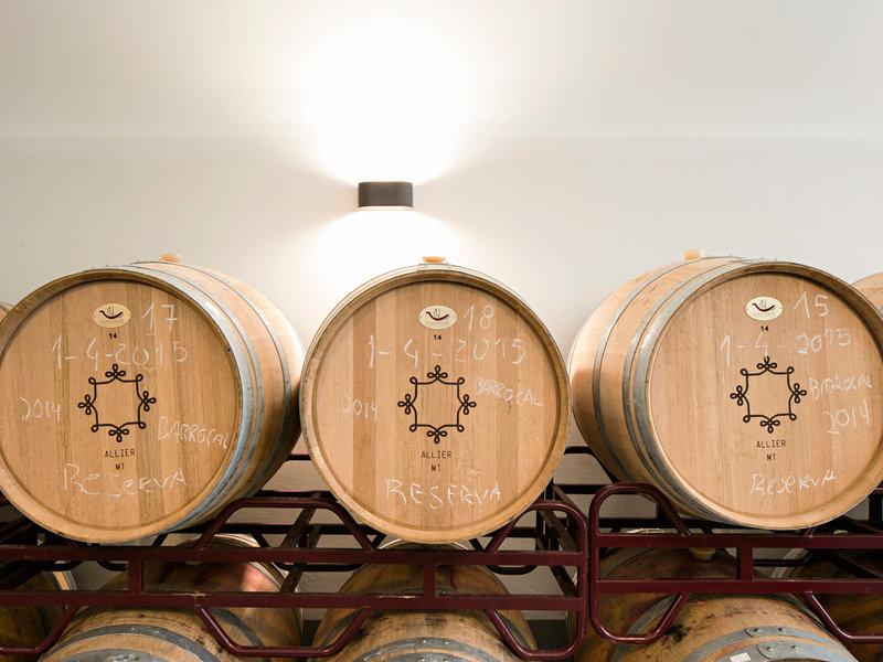 Winery room