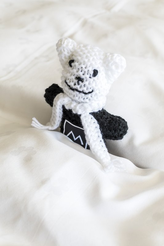 Miramont Teddy