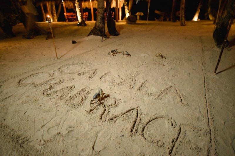 The Calala Island Crab Race