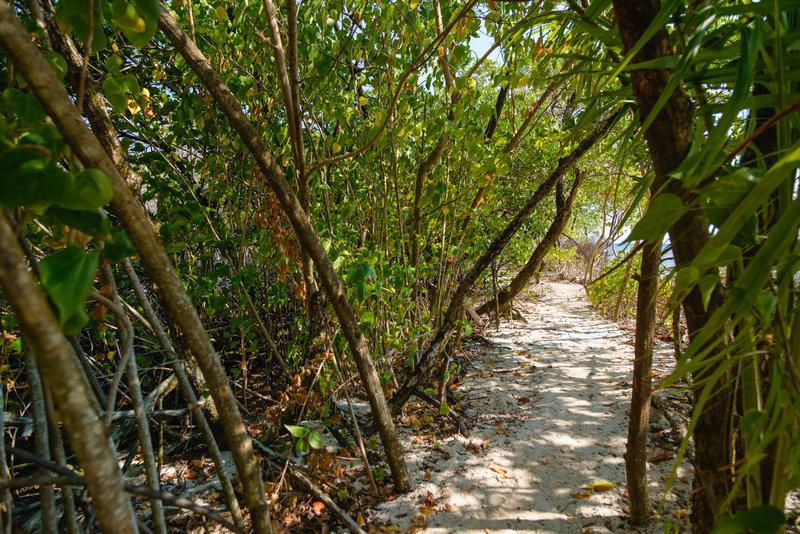 Trail to a private beach
