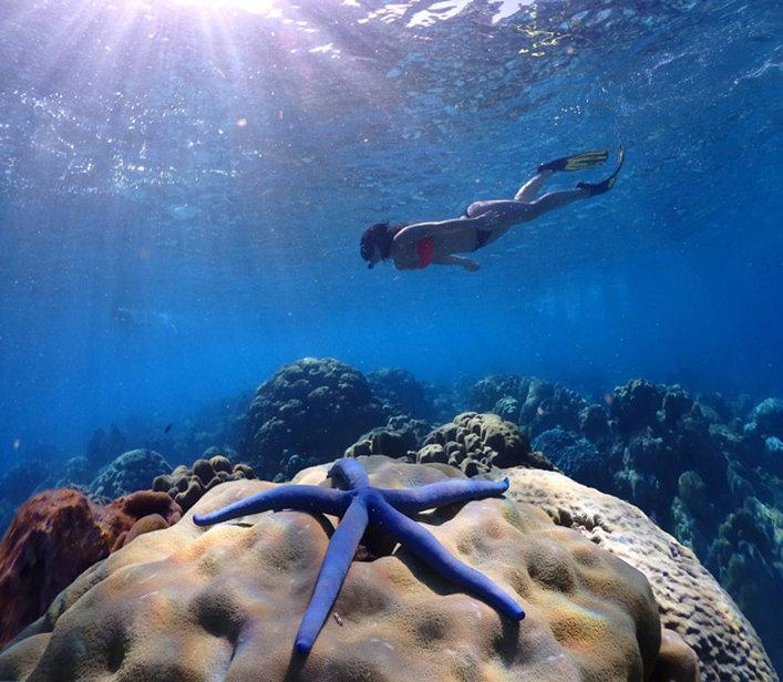 Koh Haa Underwater