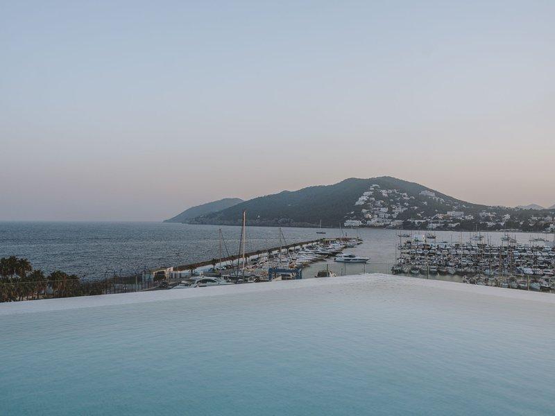 Infininty Pool View