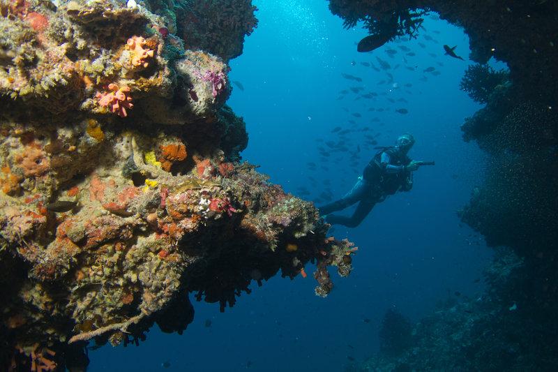 Baros Maldives Diving