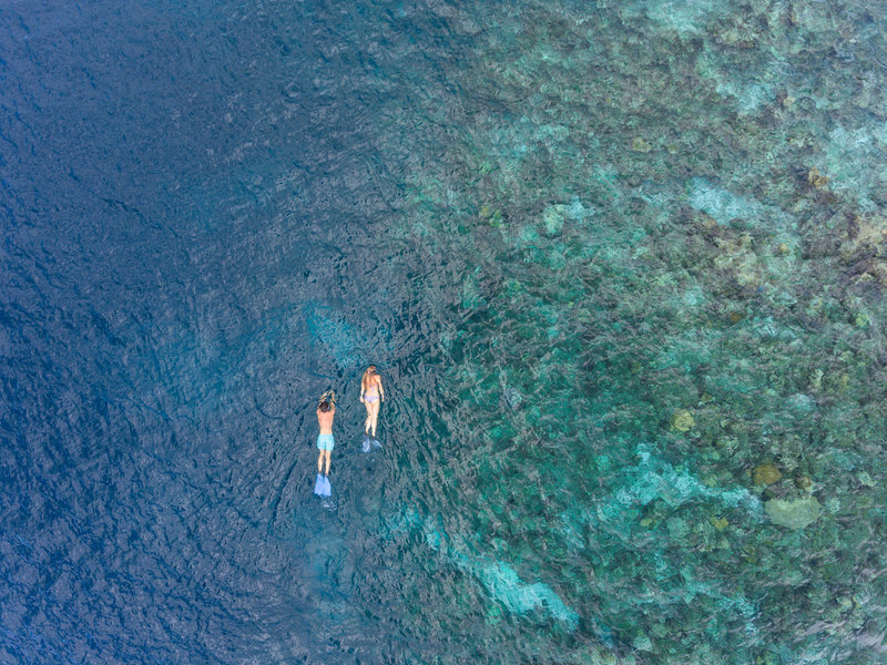 Baros Maldives Snorkeling