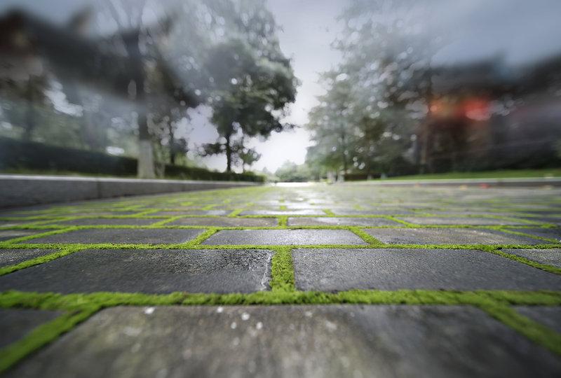 Villa Path