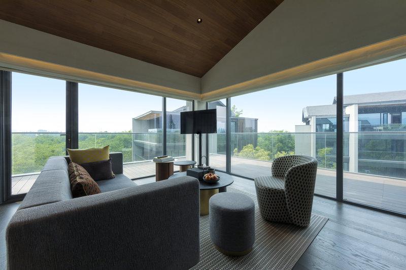 Deluxe View Suite BLiving Area