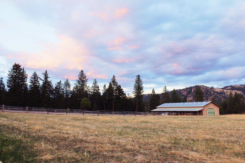The Barn and Wide Open Pasture