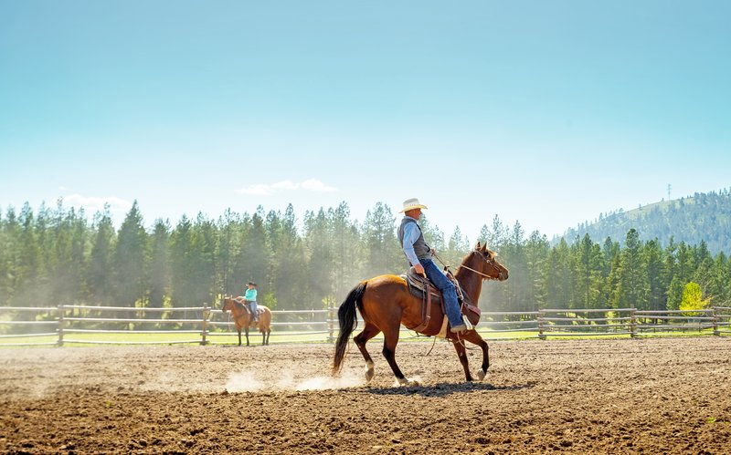 Ranch Riding Lessons