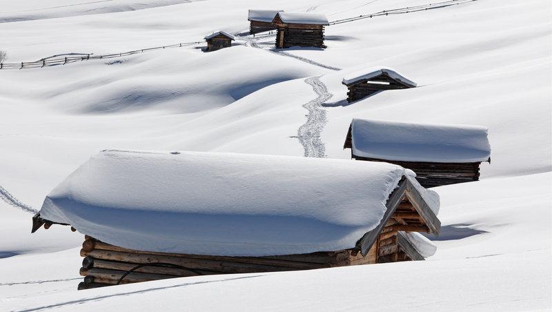 Silent Nature Winter