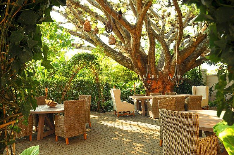 Tree Terrace Dining