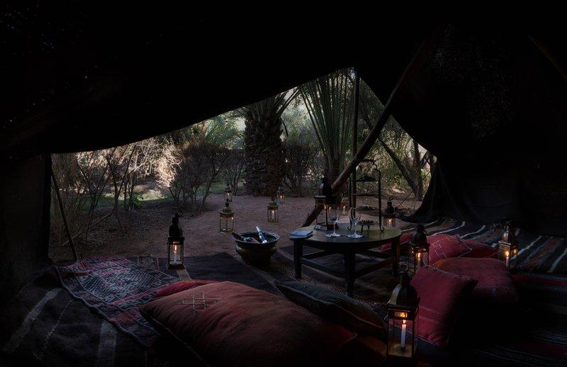 Traditional Berber Tent Garden Experience