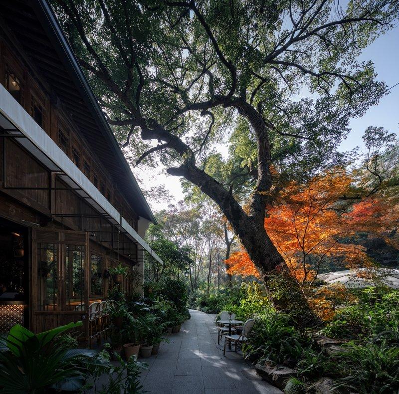 SHIJIU Gastro Lounge